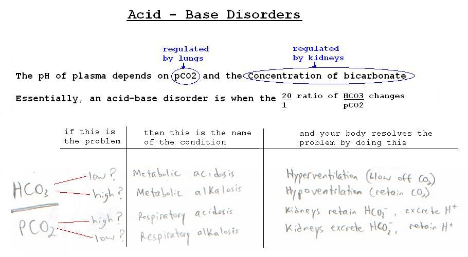 acid base questions Ap chemistry practice test: ch 14 a strong base b)a weak acid c)a weak base d) question 2 is question 1 in previous years and questions 3&4 are.